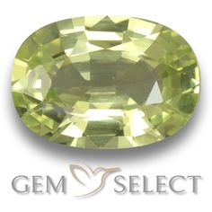 GemSelect features this natural untreated Chrysoberyl from Sri Lanka. This Green Chrysoberyl weighs 1.1ct and measures 7.7 x 5.5mm in size. More Oval Facet Chrysoberyl is available on gemselect.com #birthstones #healing #jewelrystone #loosegemstones #buygems #gemstonelover #naturalgemstone #coloredgemstones #gemstones #gem #gems #gemselect #sale #shopping #gemshopping #naturalchrysoberyl #chrysoberyl #greenchrysoberyl #ovalgem #ovalgems #greengem #green Green Gemstones, Loose Gemstones, Natural Gemstones, Buy Gems, Gem Shop, Gemstone Colors, Shades Of Green, Stone Jewelry, Sri Lanka