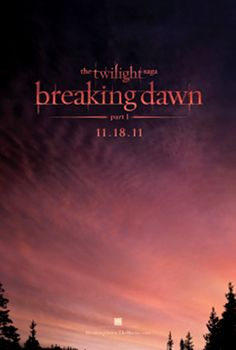 I'm so sad that it's almost over.  This has been quite a journey for me.  I've met some of the best people from around the world who love Twilight as much as I do!!!  I loved the scene where Jacob imprints on Renesmee!!!