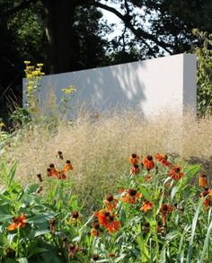 Freestanding rendered walls in front of tall rear boundary hedge.  Creates focal points and leads the eye away from high hedge