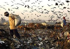 Global Informer   It happens somewhere in this planet now. - and this is only one place of many worldwide .. waste one of the biggest problem on our planet !    Delhi – Capital of India, wears the garbage capital crown, as city produces highest solid waste – 9000 tones per day, sources said.    On occasion of World Water Day, March 22, water resource ministry claimed that city generates more than 9000 tones garbage in the form of solid waste per day, the highest by any Indian city.