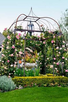 Pink 'Eden' roses climb an iron pergola that frames a knot garden of low variegated-boxwood (Buxus micro) hedges, with sword-shaped iris foliage surrounding a central urn, and a lone curry plant (Helichrysum angustifolium) at each corner. | Photo: Mark Lohman | thisoldhouse.com