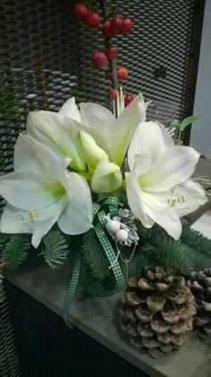 Presentazioni floreali