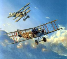 Sopwith Dolphin & Fokker Dr.I, by Paul Monteagle