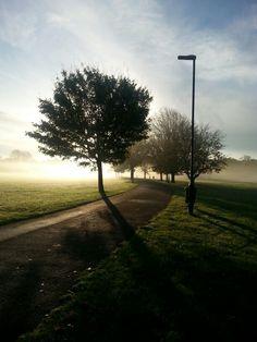 Glorious morning!