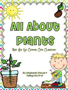 Falling Into First: All About Plants + Freebie