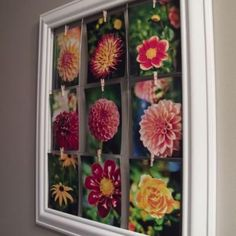Great way to display pics of Gabby as she grows, print new picture and clip it. Or the thousand Art pieces, clip it.