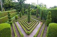 Topiary in formal garden, Botanical Garden, Funchal, Madeira, Portugal, Europe