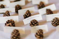 mini pinecone escort cards | Gorgeous Mountain Wedding in Alberta | Images by Diane + Mike Photography
