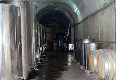 Piquentum: From Mussolini's Bunker to a Winery Bunker, Wine, World, Awesome, The World, Asylum