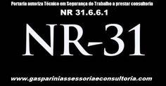 Portaria autoriza Técnico em Segurança do Trabalho a prestar consultoria       www.gaspariniassessoriaeconsultoria.com     O Decreto-Lei 93....
