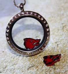 Red Arkansas Razorback Inspired Floating Charm - WPS - Call the Hogs! Hand Painted Handmade Charm for South Hill and Origami Owl Lockets by RepliKitty, $8.00