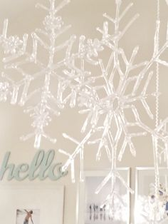 Winter decor, transi