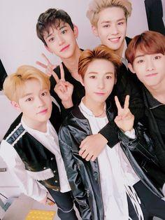 NCT China Line: Chenle, Lucas, Renjun, Kun, and Winwin -Bolinhos Nct 127, Extended Play, Winwin, Monsta X, K Pop, Shinee, Nct U Members, Nct Chenle, Johnny Seo