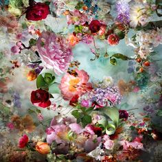 I'll be your summer picture from the series Distorted Nature by Isabelle Menin, artist of category FINE WORKS at photo art editions LUMAS Art Floral, Blog Art, Dutch Golden Age, Photo D Art, Vector Flowers, Cross Paintings, American Art, Fine Art Photography, Online Art