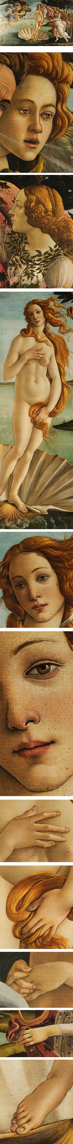 Botticelli's Birth of Venus. Uffizzi Gallery, Florence, Italy.