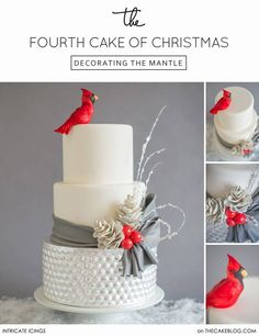Cake. Simple. Elegant. Gorgeous. Made for Christmas but beautiful for any celebration.