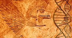 Humans with blood type Rh Negative belong to an Extraterrestrial lineage according to new theory | Earth. We are one
