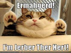 Jerber!