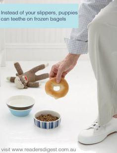 how to cook frozen bagels