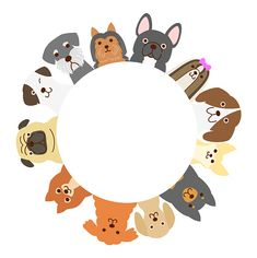 Pet Shop, Dog Grooming Shop, Cute Wallpaper Backgrounds, Cute Wallpapers, All Animals Images, Animal Body Parts, Dog Logo, Instagram Logo, Dog Crafts
