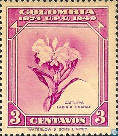 84 - Colombia [COL] - UPU 75 years 1950 Flower Stamp, Flower Art, Stamp World, Postage Stamp Art, Art Studies, Stamp Collecting, Mail Art, My Stamp, Science Nature