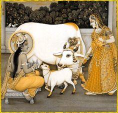 Krishna Milking cow with Radha Nearby (Reprint on Paper - Unframed) Hare Krishna, Radha Krishna Photo, Krishna Art, Krishna Lila, Pichwai Paintings, Mughal Paintings, Indian Art Paintings, Pigeon, Rajasthani Painting