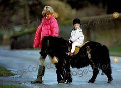 010057-25 12-31-1987 Princess Diana Photo by Alpha-Globe Photos Inc