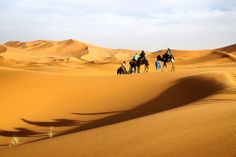 Desierto de Sahara (Norte de África)