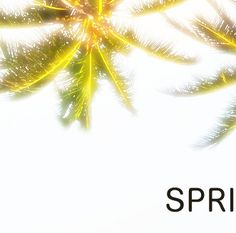 Tickets are now available - Book today!  12/04/17 - 17/04/17   Visit our webpage and book your ticket. www.SpringBreakPortugal.com  : www.facebook.com/SpringBreakPortugal : www.twitter.com/SpringBreakPortugal  #SpringBreakPortugal2017 #SBPT17 #SpringBreak #Holiday #Vacation #Portugal #Algarve #Europe #Music #DJs #Artists #Festival #Hotel #Paradise #AllNight #Party #Live #Love #Life #Adventure by springbreakportugal http://bit.ly/AdventureAustralia