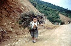 The causes of poverty are incredibly diverse and crucial to understand the core of the problem: from agriculture to corruption, conflicts & demography Old Pictures, Old Photos, Vintage Photos, Countryside Village, Ancient Mysteries, Japan Photo, Korean War, History Photos, Beautiful Children