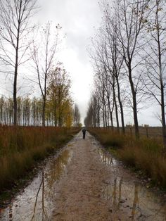 9 Steps to Completing the Camino de Santiago as told by Anthony Manrique | OutdoorMindedMag.com **