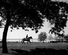 Track Season - #Saratoga Springs, NY