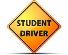 Drivers ed assignment help please?
