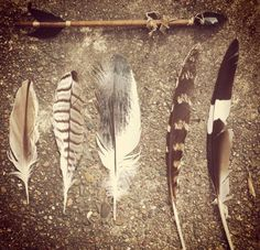 #feathers