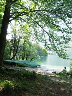 natuur_van_Bohinj_meer_in_Julische_Alpen_Nationaal_Park_Triglav_bron_MijnSlovenie_m