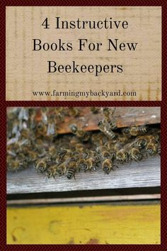 Thinking about becoming a beekeeper? Here are four books to get you started raising bees. Beekeeping For Beginners, Beekeeping Equipment, Raising Bees, Backyard Beekeeping, Beekeeping Books, Bee Boxes, Bee Farm, Learn Faster, Bees Knees