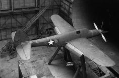 Republic XP-69 flaps