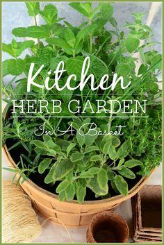 Easy way to plant a kitchen herb garden in a basket. stonegableblog.com