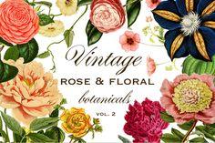 Vintage Rose & Floral Botanicals Graphics Vol. 2
