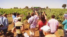 Una jornada técnica sobre aplicación de los fitosanitarios en viñedo muestra a más de 250 agricultores las últimas innovaciones tecnológicas