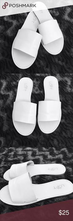 Ann Taylor Loft White Slides Size 7 Ann Taylor Loft White Slides Size 7  All items are in EXCELLENT USED CONDITION.  I strive to provide quality items and excellent customer service. Feel free to contact me with any questions! New items added daily so follow me to keep up with the great deals!  Thank you!  ITEM A39 Ann Taylor Shoes Sandals