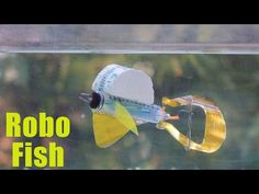 How To Make a Robotic Fish at Home using Waste materials - YouTube