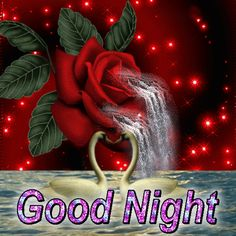 Good Night Thoughts, Good Night Dear, Good Night Gif, Good Night Messages, Good Night Wishes, Good Night Sweet Dreams, Good Night Image, Good Night Quotes, Morning Quotes