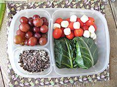 Healthy Collard Green Burrito Meal-To-Go: Vegetarian & Gluten Free