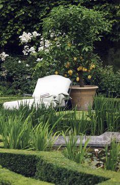 Recliner, Lemon Tree, Boxwood
