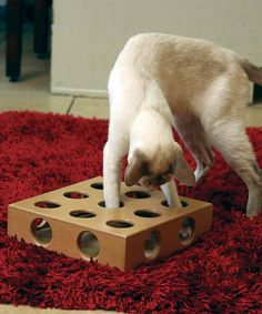 Take a look at this Peek 'n' Play Cat Puzzle Set by Etna Products on #zulily today!