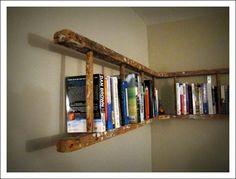 horizontal ladder for books