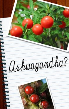 5 Health Benefits of Ashwagandha For Your Skin- dr. Oz talked about this also