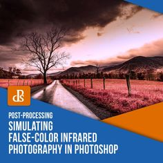 Simulating False-Color Infrared Photography in Photoshop Featured Image