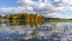 Autumn on Lake Kickapoo at Shakamak State Park in Indiana captured by Wandering Ways Photography- Amy 2016